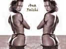 Ana falchi
