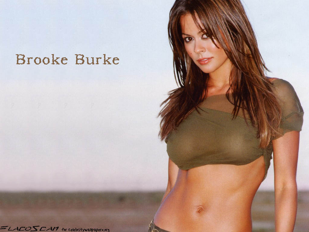 Brooke burke Wallpapers  Photos  images  Brooke burke pictures  6862