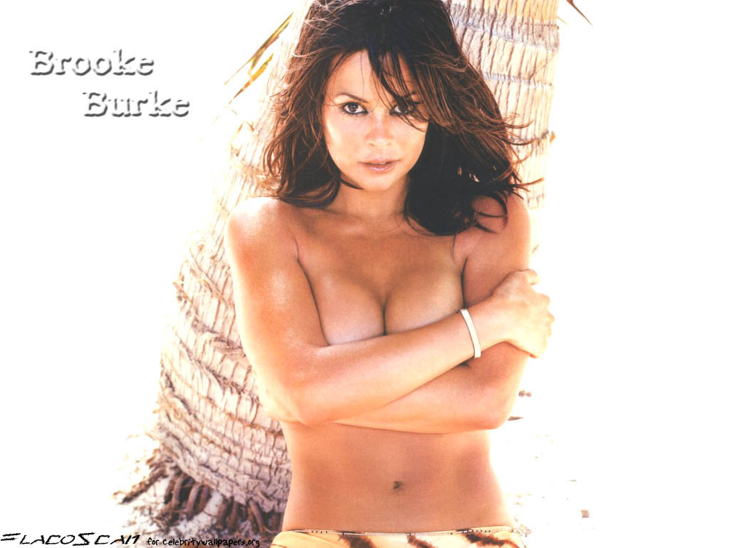Brooke burke Wallpapers  Photos  images  Brooke burke pictures  6857