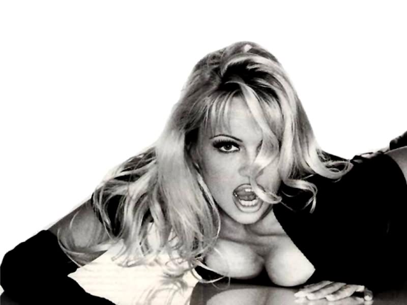 pamela anderson wallpapers. photos, images, pamela anderson pictures ...
