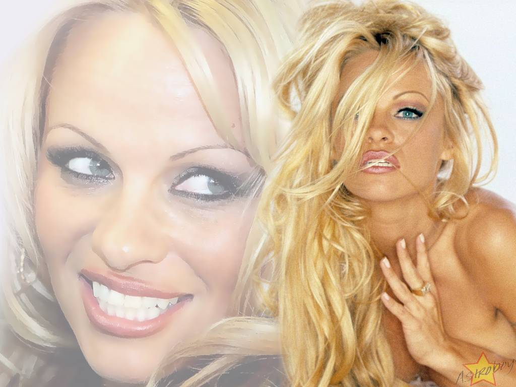 Pamela anderson wallpapers (13556)